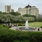NYC's Hidden Gem: Conservatory Garden